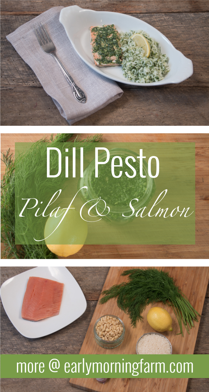 Fresh dill pesto with salmon and rice. width=